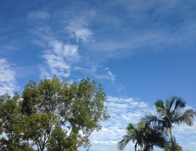 Beautiful San Diego Sky