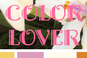 COLOR LOVER FEATURE IMAGE